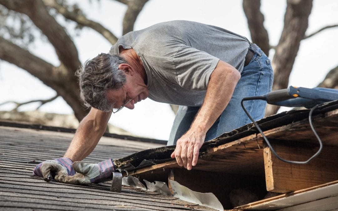 have a professional inspect to determine if you need a roof replacement