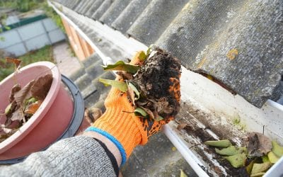 Gutter Cleaning During Fall: Don't Neglect This Task